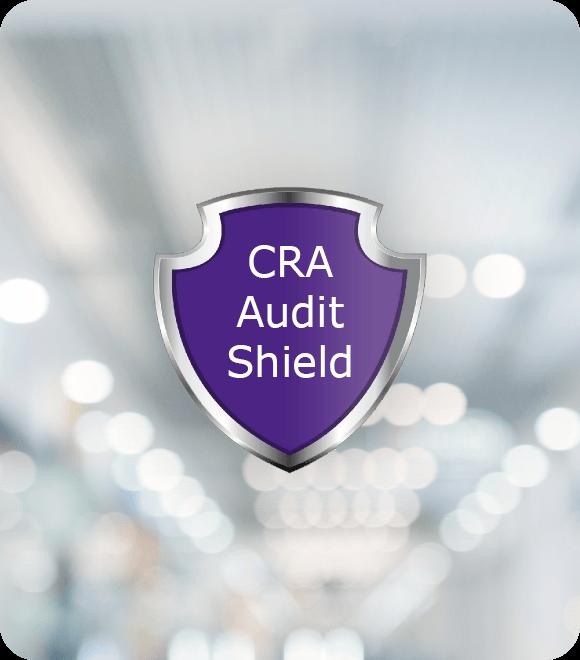 CRA Audit